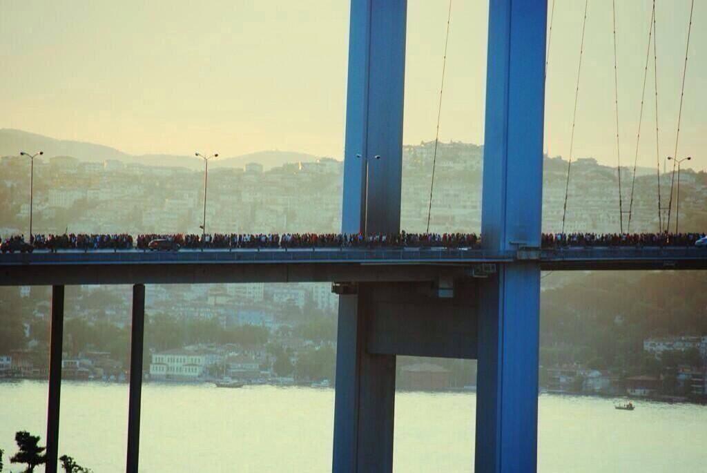 gezi köprü