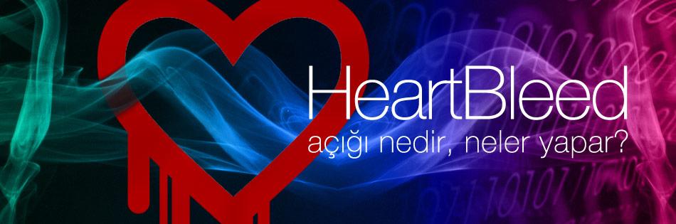 heartbleednedir