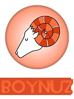 1_boynuz