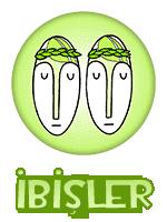 3_ibisler